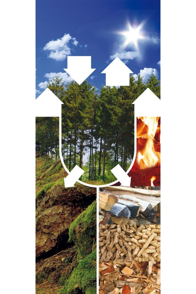 Beim Heizen mit Holz ist der CO2-Ausstoß neutral. Foto: djd/Ligno Heizsysteme GmbH